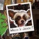 Miss Teri Tale: Where's Jason? - logo