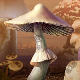 Mushroom Age - Travel through time and save the world in The Mushroom Age! - logo