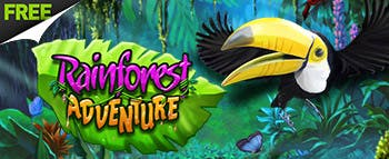 RainForest Adventure - image